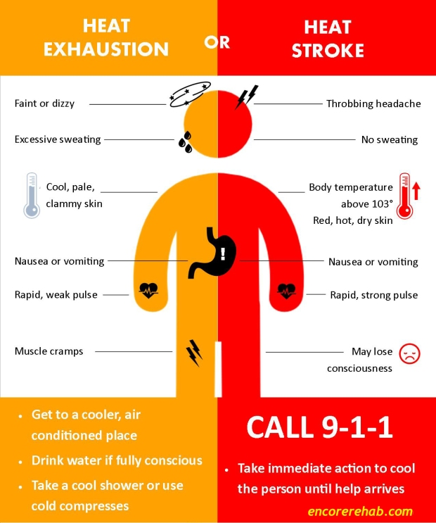 Heat Exhaustion or Heat Stroke infographic #EncoreRehab